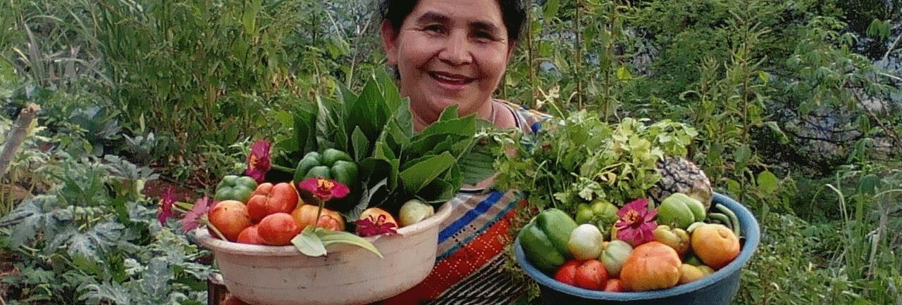 Una cosecha abundante