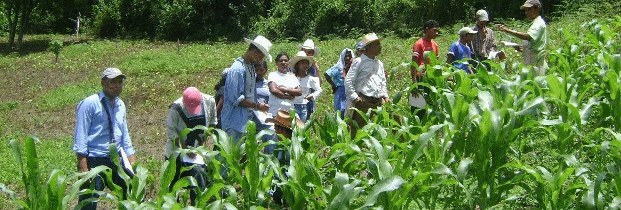 Local CIAL capacita a pequeñas comunidades